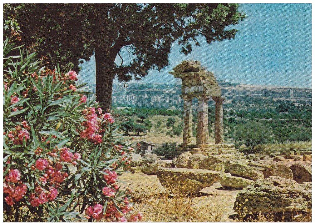 Comincia a gennaio la primavera siciliana