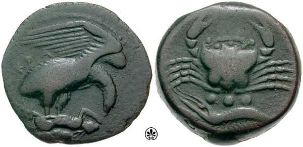 Calciati_054.2