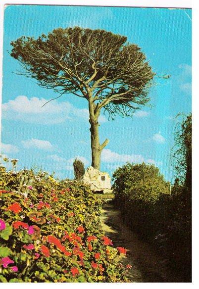 cartolina-sicilia-agrigento-10635-tomba-di
