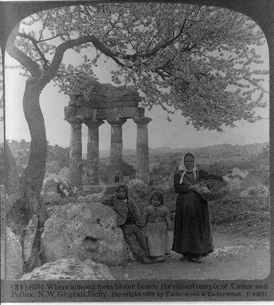 La questione contadina in Sicilia alla fine dell'Ottocento