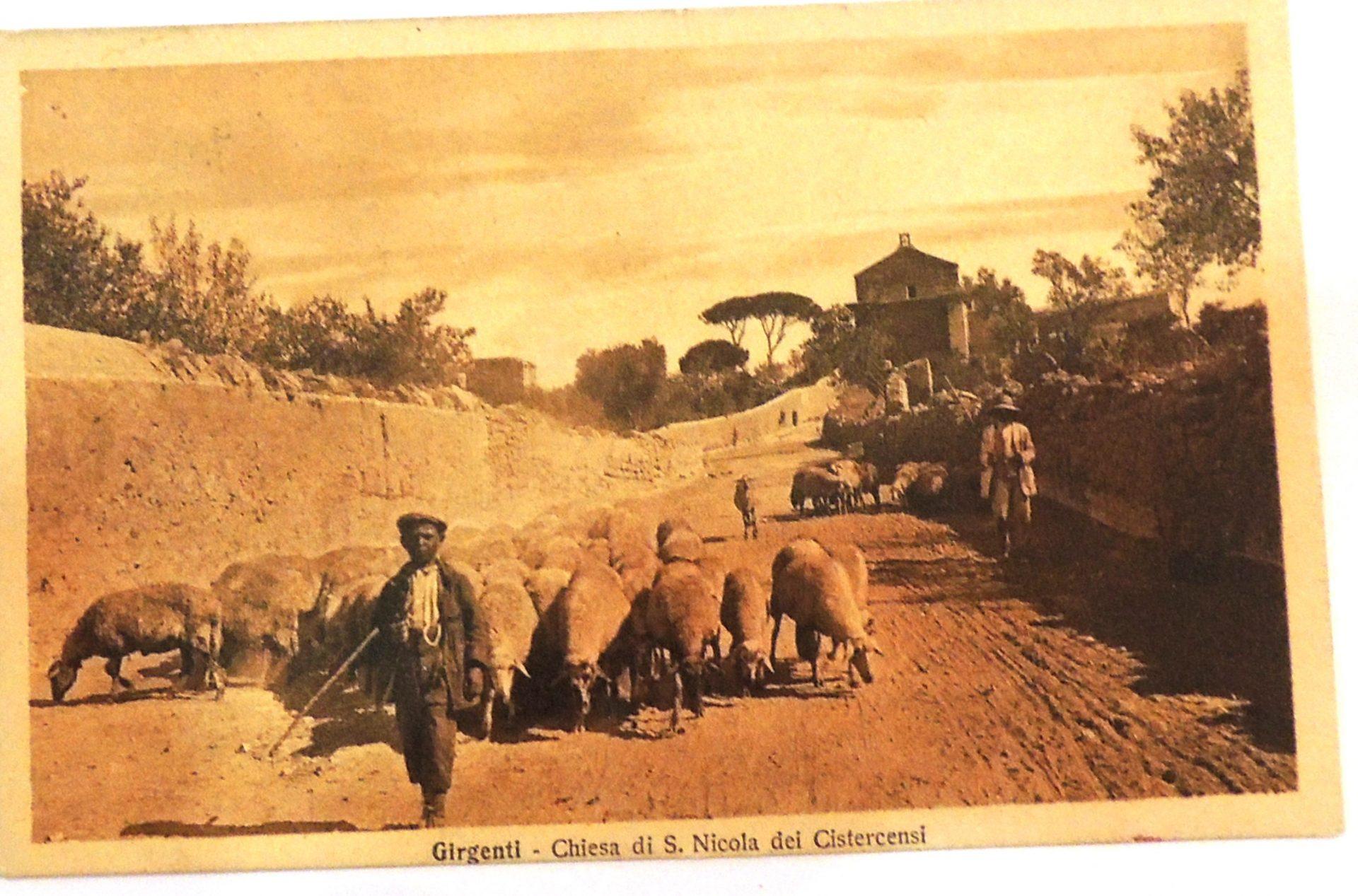 Una giornata da pastori nella Valle dei Templi