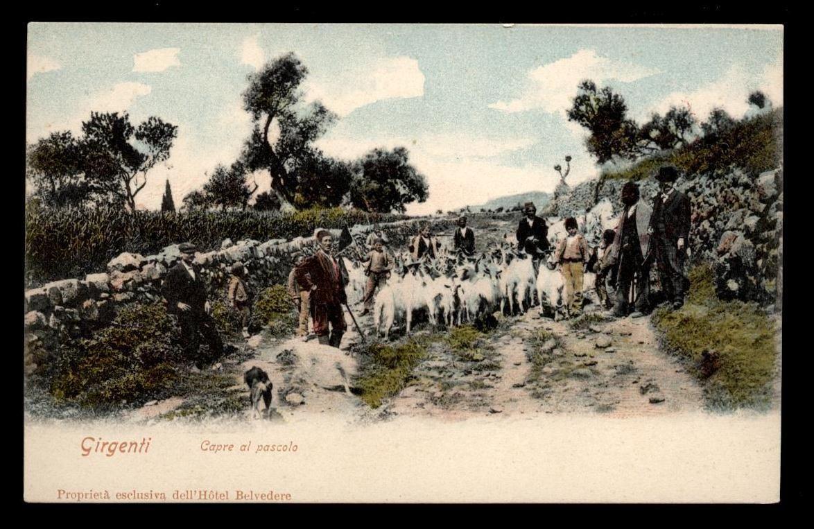 Agrigento il 1842 fu un'annata d'oro