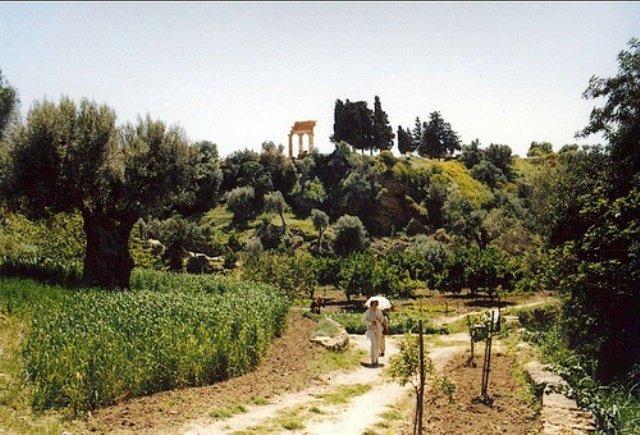 Giardino della Kolymbethra: un viaggio fra storia, arte e natura grazie all'impegno del FAI