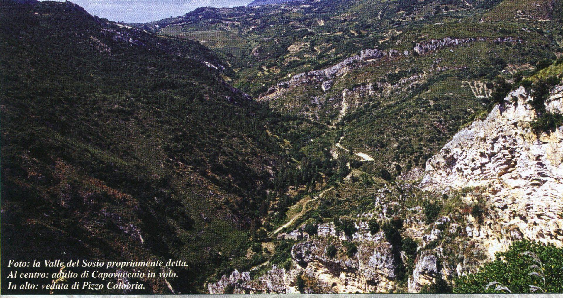 La mitica valle dei Sicani.Itinerari per una vacanza naturale