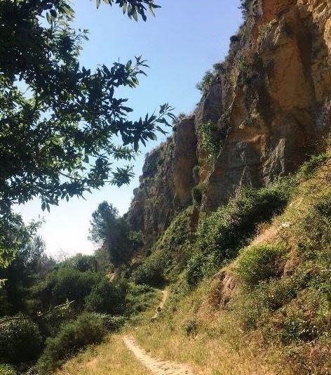Fauna e Flora nella Rupe Atenea ad Agrigento