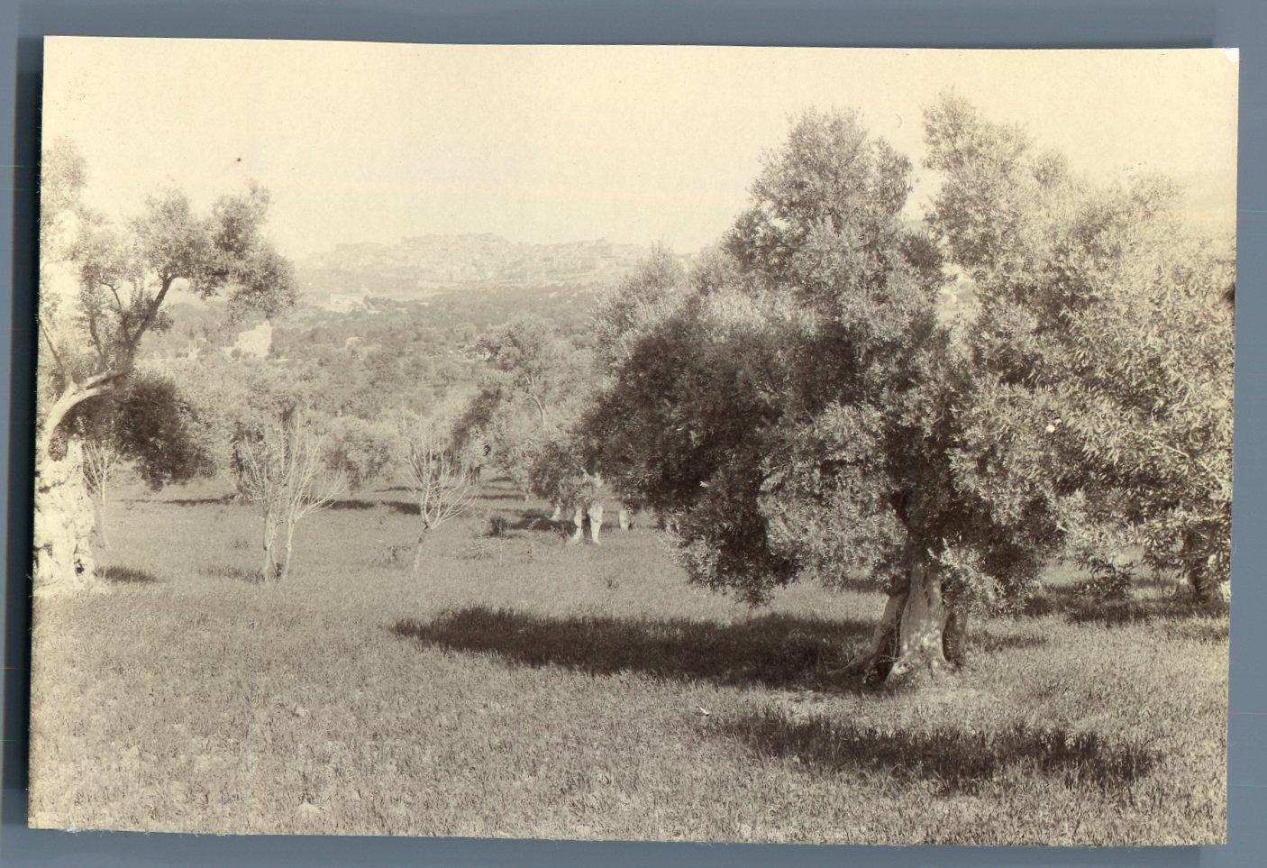 Agrigento nel 1894. Roger Lambelin nella Città dei Templi