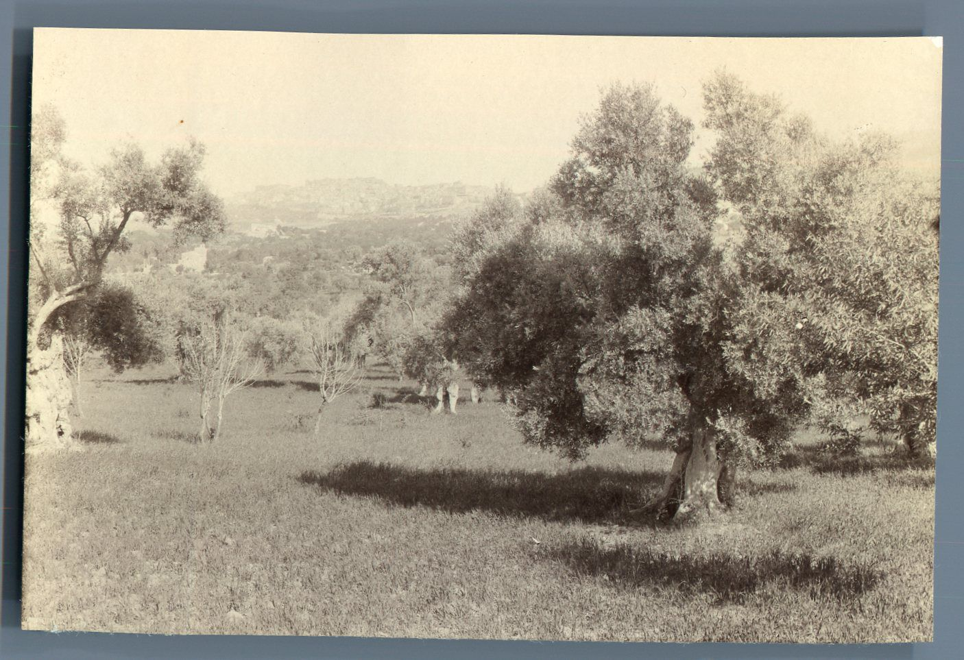 agrigento 1894